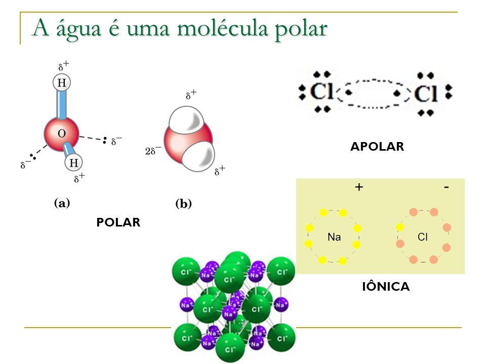 A água é uma molécula polar POLAR APOLAR IÔNICA