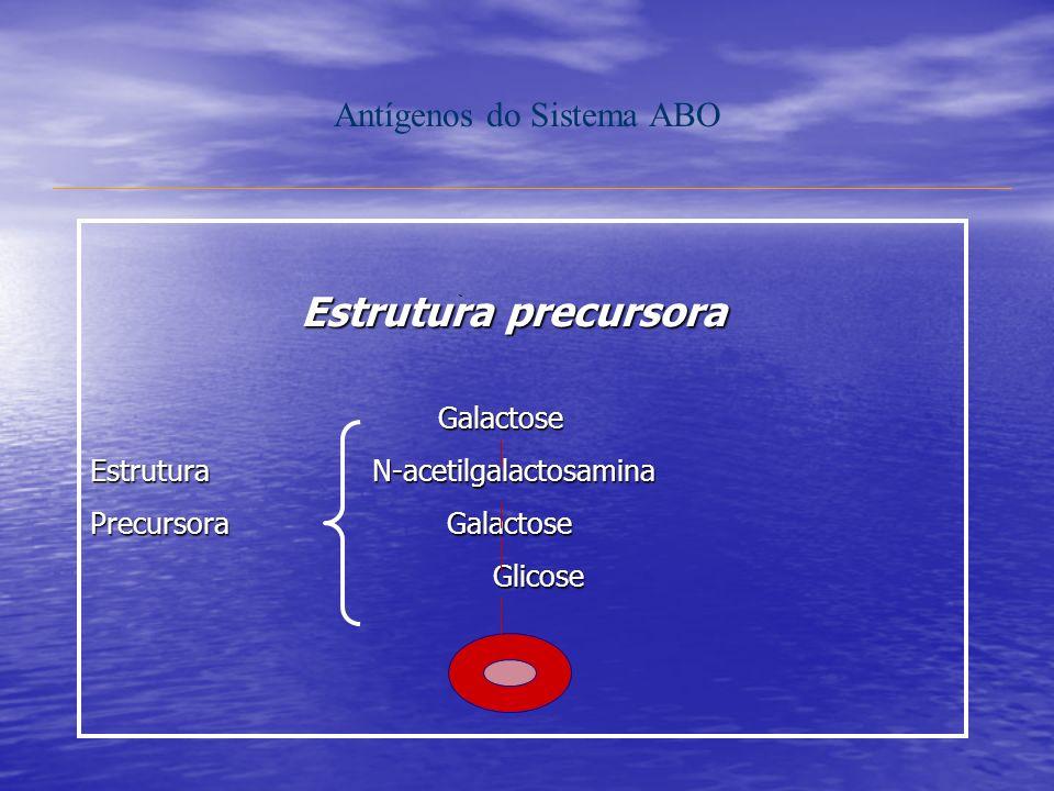 Antígenos do Sistema ABO Estrutura precursora Galactose Galactose Estrutura N-acetilgalactosamina Precursora Galactose Glicose Glicose