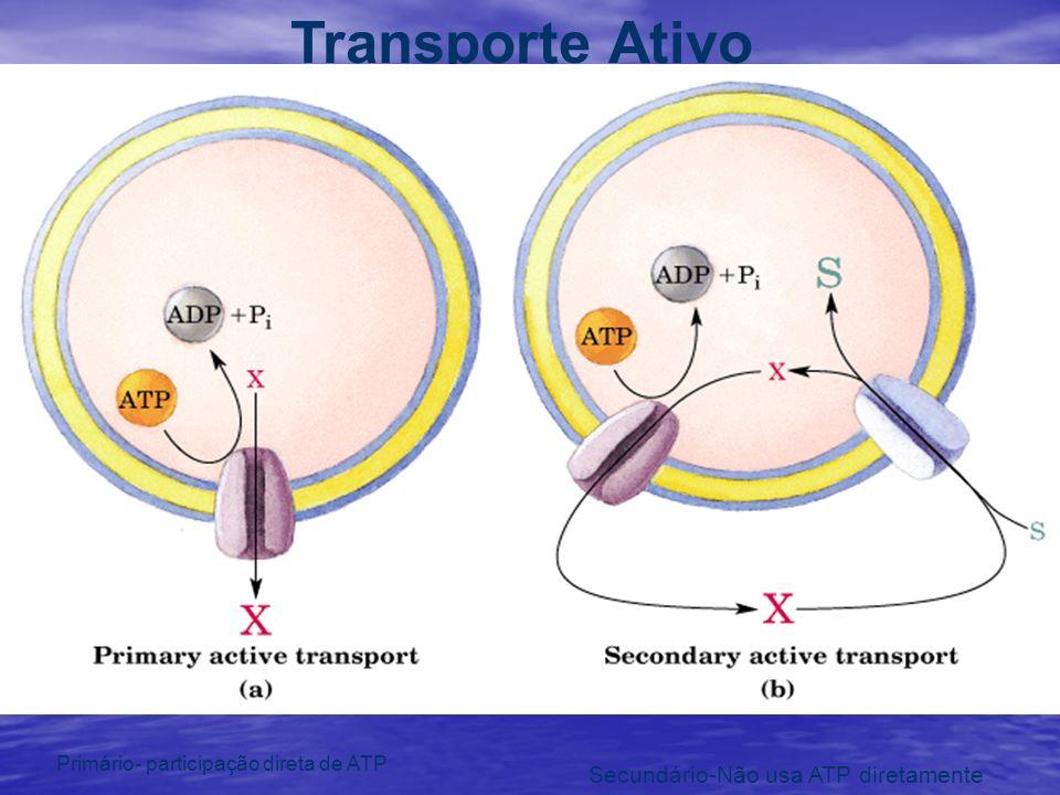 Transporte Ativo Primário- participação direta de ATP Secundário-Não usa ATP diretamente
