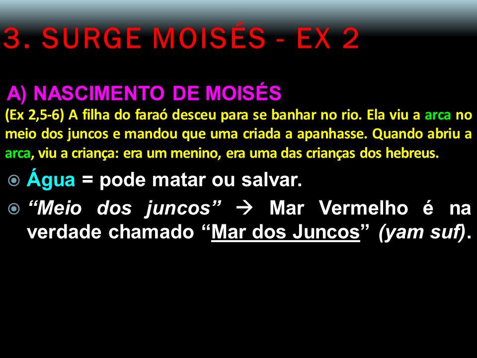 3. SURGE MOISÉS - EX 2 A) NASCIMENTO DE MOISÉS (Ex 2,5-6) A filha do faraó desceu para se banhar no rio. Ela viu a arca no meio dos juncos e mandou qu