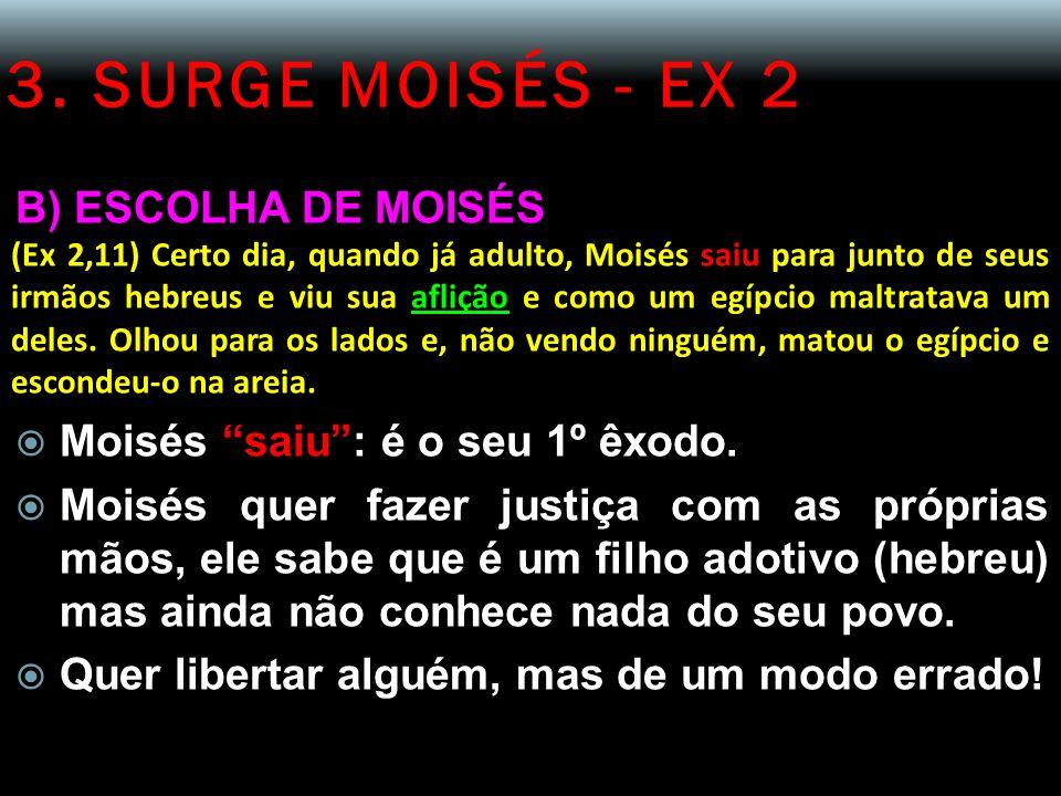 3. SURGE MOISÉS - EX 2 B) ESCOLHA DE MOISÉS (Ex 2,11) Certo dia, quando já adulto, Moisés saiu para junto de seus irmãos hebreus e viu sua aflição e c
