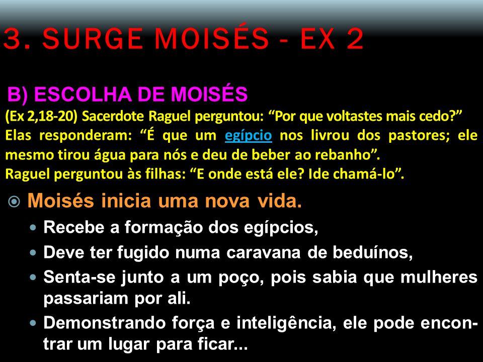 3. SURGE MOISÉS - EX 2 B) ESCOLHA DE MOISÉS (Ex 2,18-20) Sacerdote Raguel perguntou: Por que voltastes mais cedo? Elas responderam: É que um egípcio n