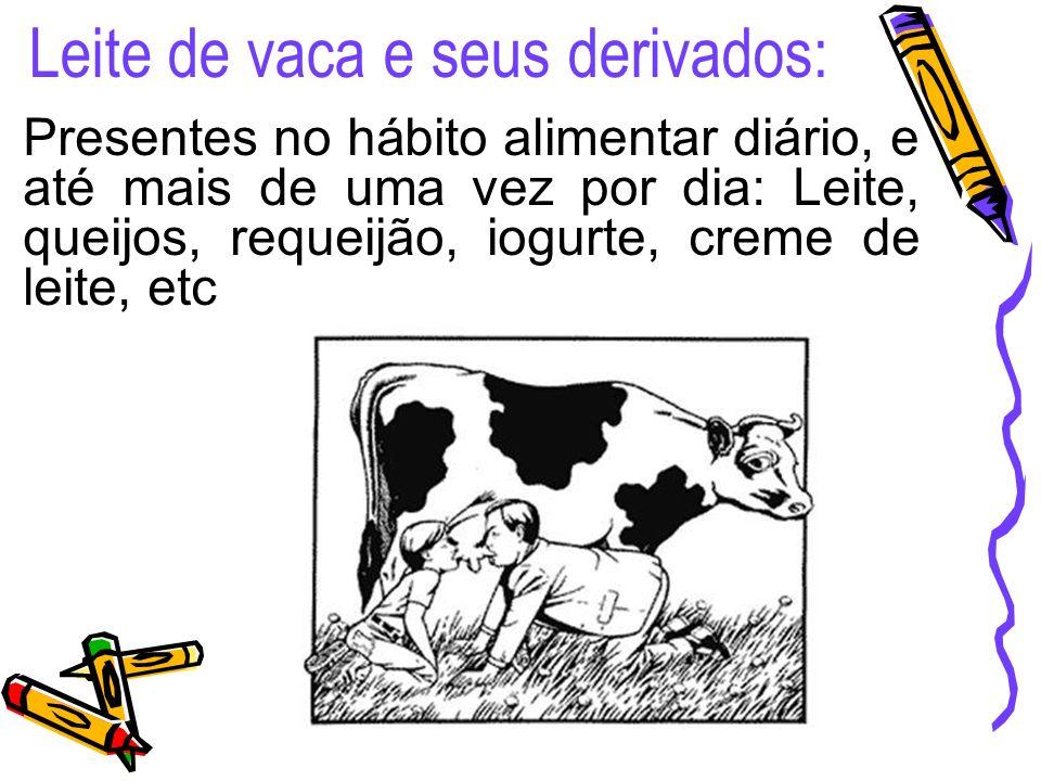 Presentes no hábito alimentar diário, e até mais de uma vez por dia: Leite, queijos, requeijão, iogurte, creme de leite, etc Leite de vaca e seus derivados: