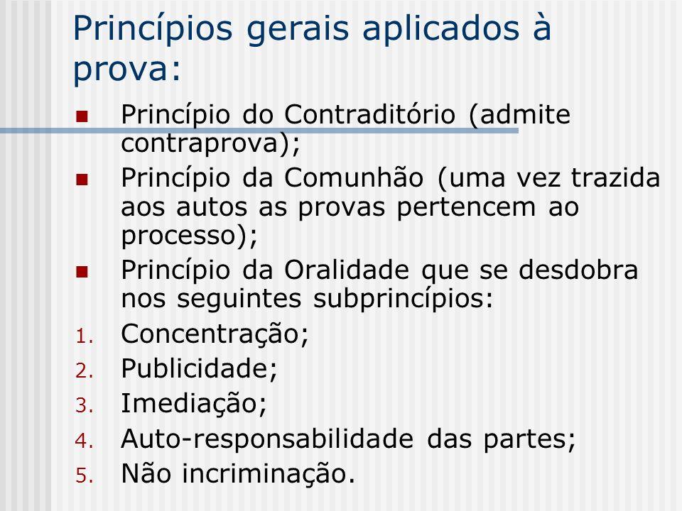 Princípios gerais aplicados à prova: Princípio do Contraditório (admite contraprova); Princípio da Comunhão (uma vez trazida aos autos as provas perte