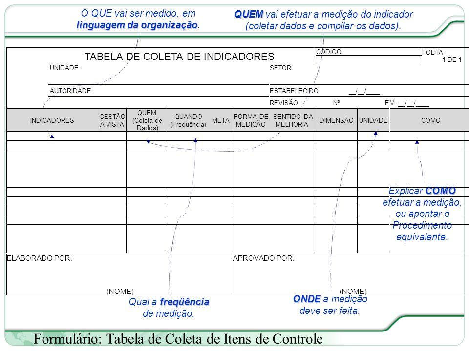 39 de 66 Formulário: Tabela de Coleta de Itens de Controle linguagem da organização O QUE vai ser medido, em linguagem da organização.