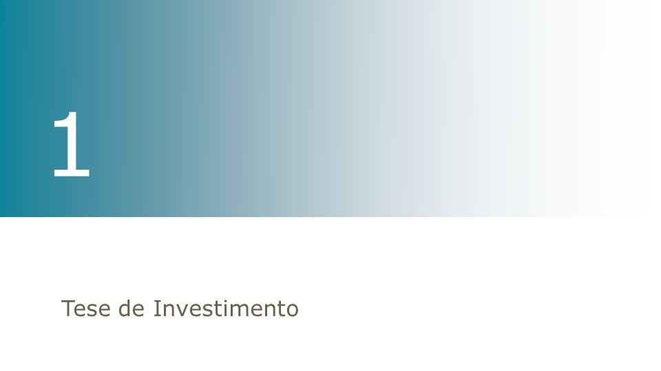 Tese de Investimento 1