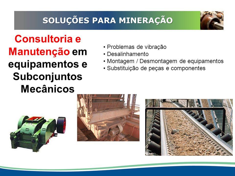 ADEQUAÇÃO EM REDUTORES SOLUÇÕES PARA MINERAÇÃO Consultoria e Manutenção em equipamentos e Subconjuntos Mecânicos Problemas de vibração Desalinhamento