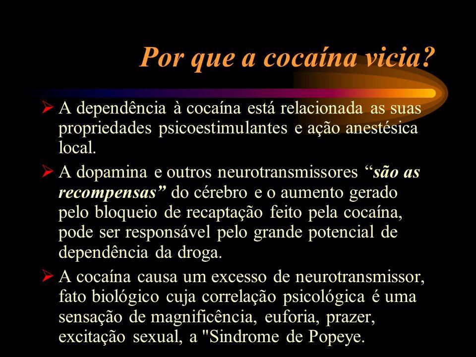 Por que a cocaína vicia? A dependência à cocaína está relacionada as suas propriedades psicoestimulantes e ação anestésica local. A dopamina e outros