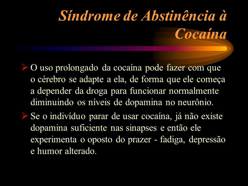 Síndrome de Abstinência à Cocaína O uso prolongado da cocaína pode fazer com que o cérebro se adapte a ela, de forma que ele começa a depender da drog