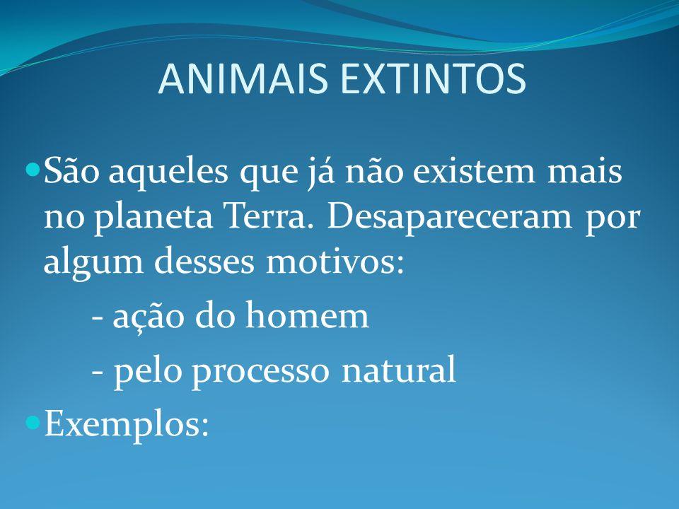 ANIMAIS EXTINTOS São aqueles que já não existem mais no planeta Terra. Desapareceram por algum desses motivos: - ação do homem - pelo processo natural