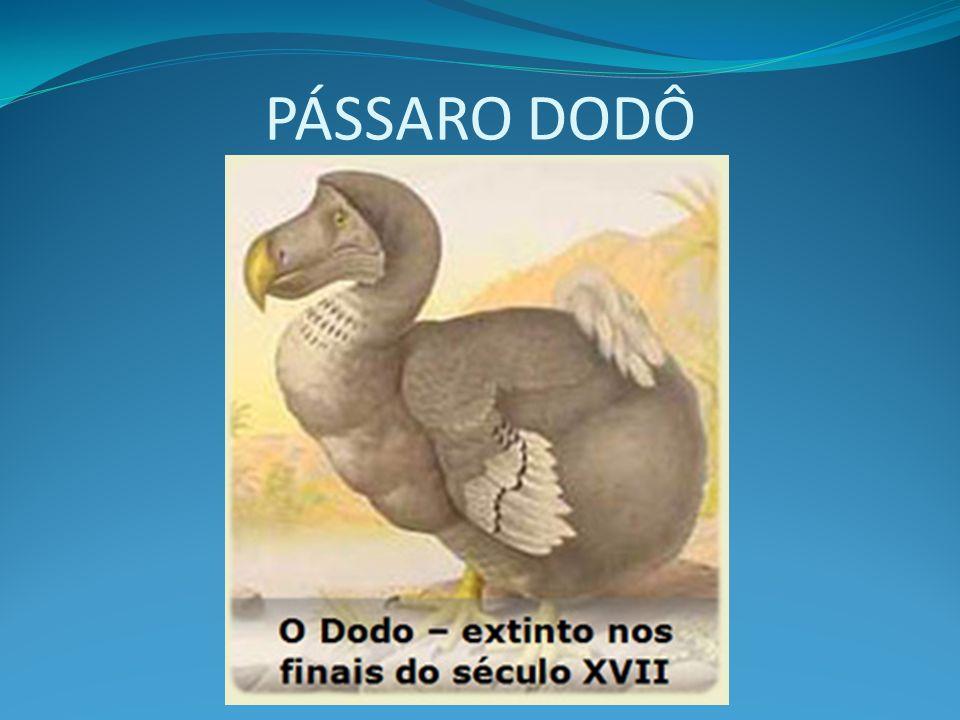 PÁSSARO DODÔ