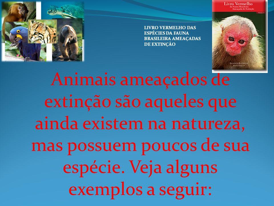 Animais ameaçados de extinção são aqueles que ainda existem na natureza, mas possuem poucos de sua espécie. Veja alguns exemplos a seguir: LIVRO VERME