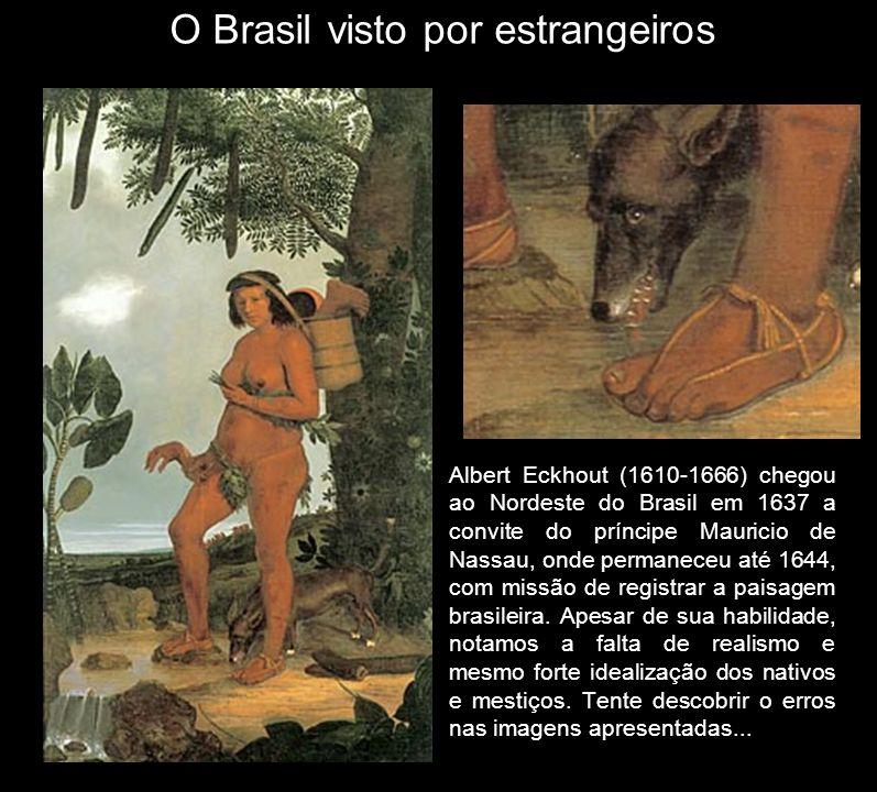 Albert Eckhout (1610-1666) chegou ao Nordeste do Brasil em 1637 a convite do príncipe Mauricio de Nassau, onde permaneceu até 1644, com missão de regi