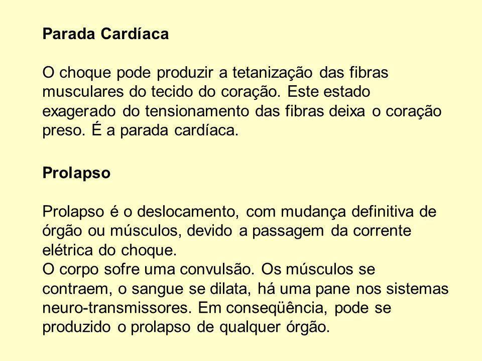 Parada Cardíaca O choque pode produzir a tetanização das fibras musculares do tecido do coração.