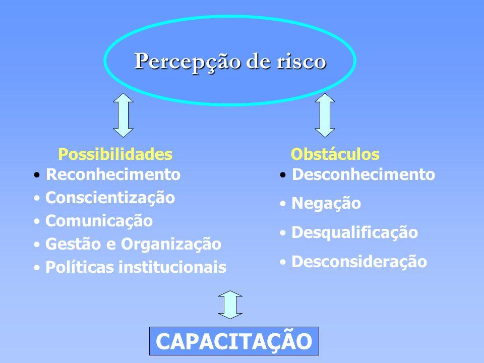 Reconhecimento Conscientização Comunicação Gestão e Organização Políticas institucionais Percepção de risco Desconhecimento Negação Desqualificação De