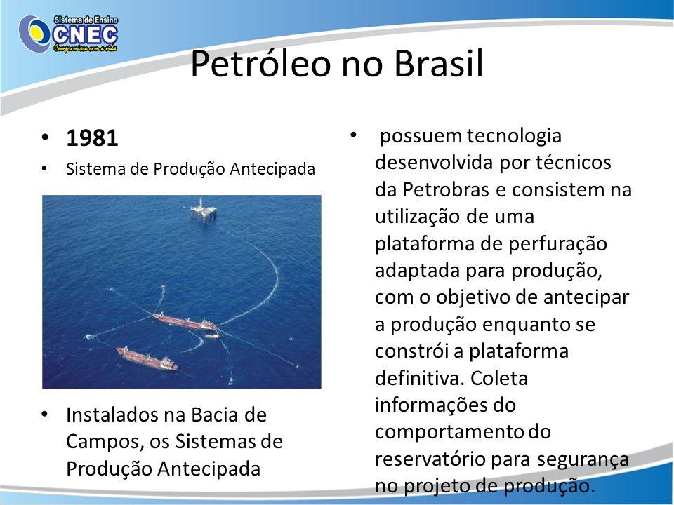 Petróleo no Brasil 1981 Sistema de Produção Antecipada Instalados na Bacia de Campos, os Sistemas de Produção Antecipada possuem tecnologia desenvolvi