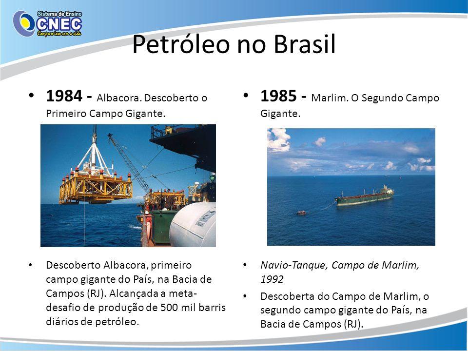 Petróleo no Brasil 1984 - Albacora. Descoberto o Primeiro Campo Gigante. Descoberto Albacora, primeiro campo gigante do País, na Bacia de Campos (RJ).