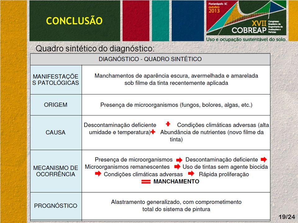 CONCLUSÃO 19/24 Quadro sintético do diagnóstico:
