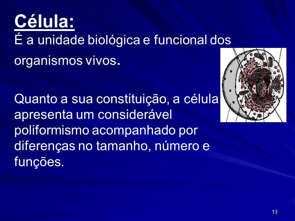 13 Célula: É a unidade biológica e funcional dos organismos vivos. Quanto a sua constituição, a célula apresenta um considerável poliformismo acompanh