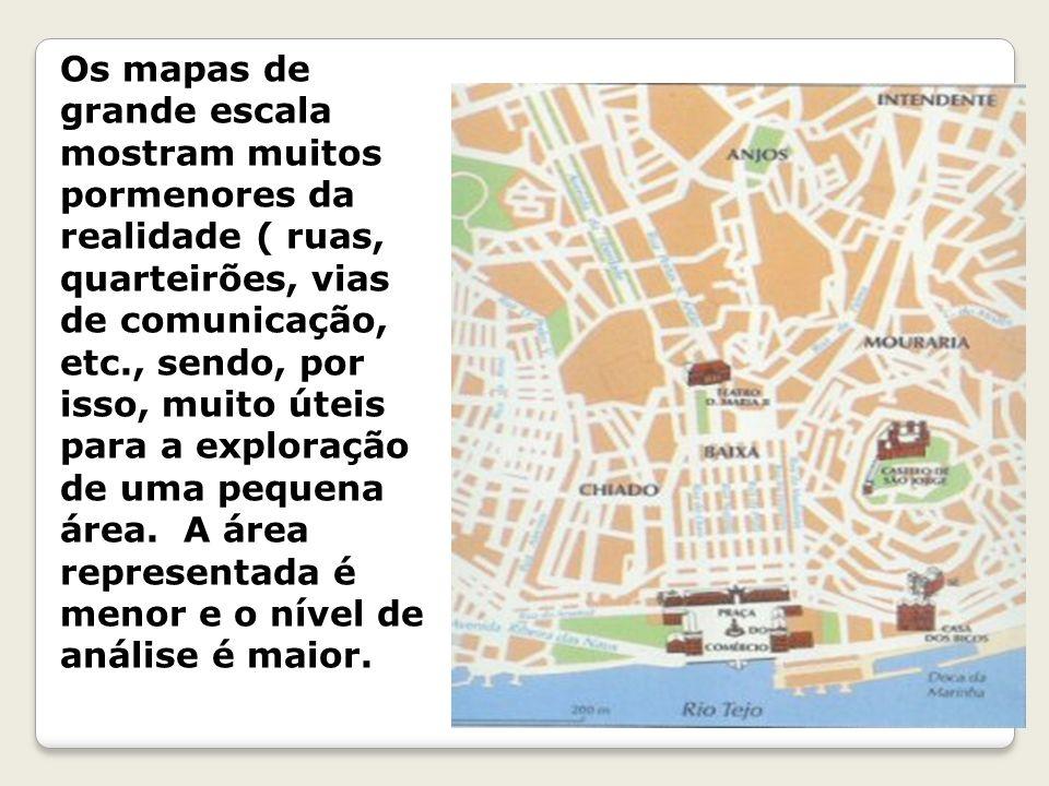 Os mapas de grande escala mostram muitos pormenores da realidade ( ruas, quarteirões, vias de comunicação, etc., sendo, por isso, muito úteis para a exploração de uma pequena área.