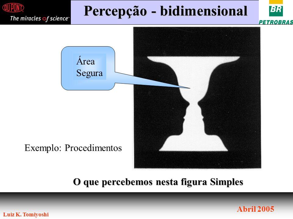 Luiz K. Tomiyoshi Abril 2005 O que percebemos nesta figura Simples Percepção - bidimensional Área Segura Exemplo: Procedimentos