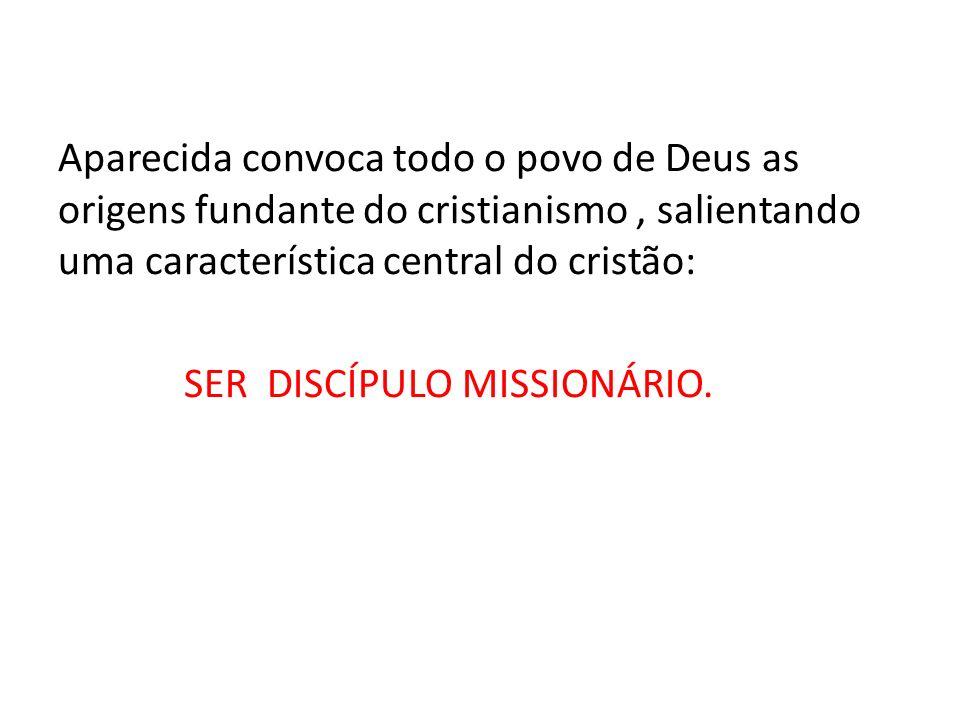 Aparecida convoca todo o povo de Deus as origens fundante do cristianismo, salientando uma característica central do cristão: SER DISCÍPULO MISSIONÁRIO.
