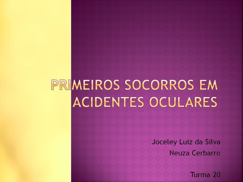 Joceley Luiz da Silva Neuza Cerbarro Turma 20