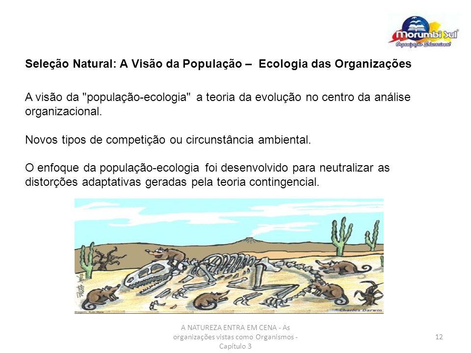 A NATUREZA ENTRA EM CENA - As organizações vistas como Organismos - Capítulo 3 12 Seleção Natural: A Visão da População – Ecologia das Organizações A