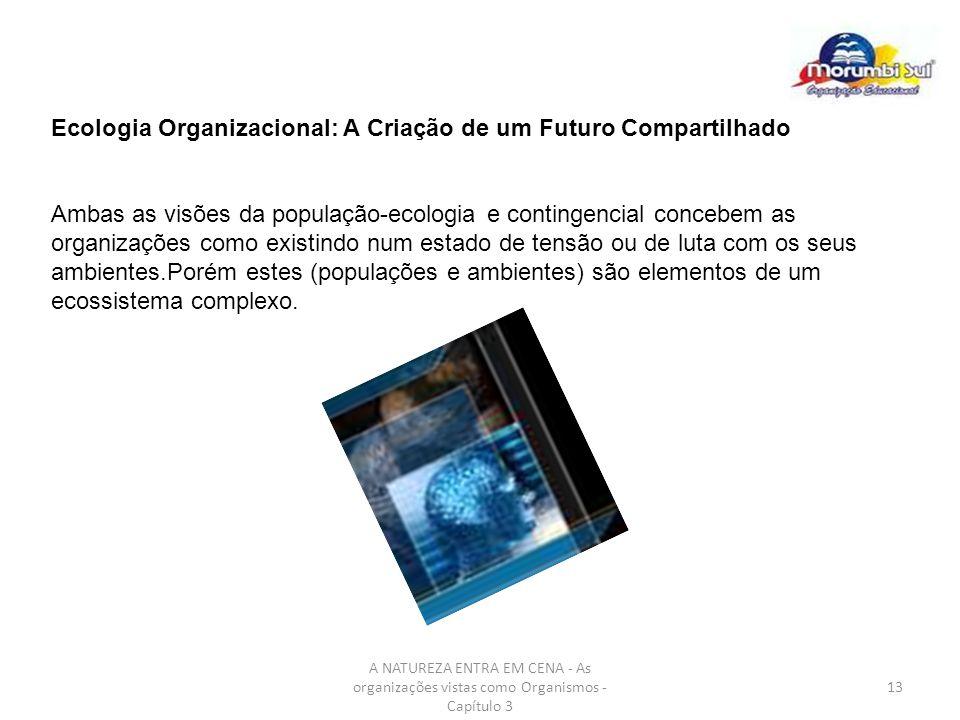 A NATUREZA ENTRA EM CENA - As organizações vistas como Organismos - Capítulo 3 13 Ecologia Organizacional: A Criação de um Futuro Compartilhado Ambas
