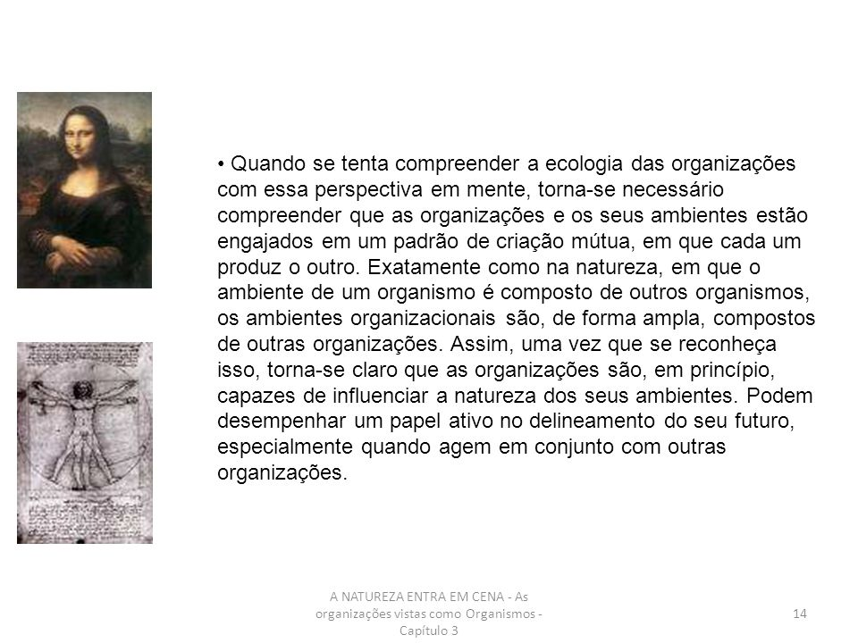 A NATUREZA ENTRA EM CENA - As organizações vistas como Organismos - Capítulo 3 14 Quando se tenta compreender a ecologia das organizações com essa per