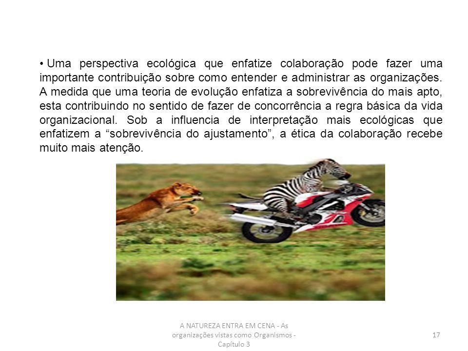A NATUREZA ENTRA EM CENA - As organizações vistas como Organismos - Capítulo 3 17 Uma perspectiva ecológica que enfatize colaboração pode fazer uma im