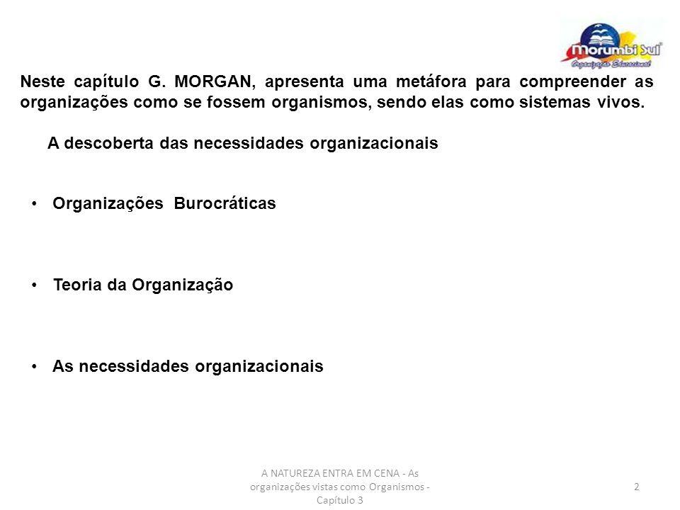 A NATUREZA ENTRA EM CENA - As organizações vistas como Organismos - Capítulo 3 3 Encorajamento ao completo comprometimento do empregado.