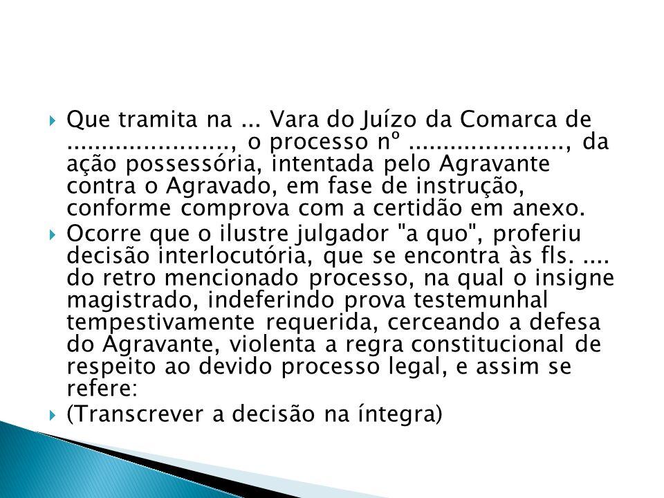 Que tramita na... Vara do Juízo da Comarca de......................., o processo nº......................, da ação possessória, intentada pelo Agravan