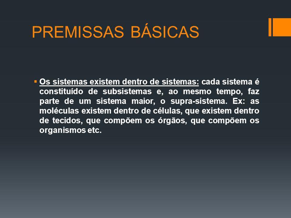 PREMISSAS BÁSICAS Os sistemas existem dentro de sistemas: cada sistema é constituído de subsistemas e, ao mesmo tempo, faz parte de um sistema maior,