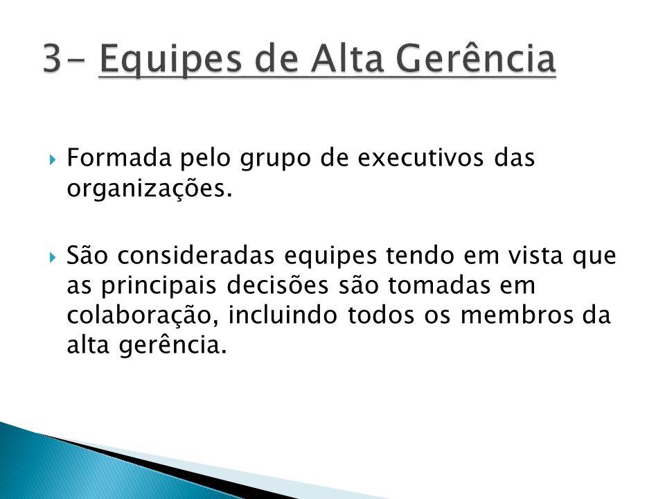 Formada pelo grupo de executivos das organizações. São consideradas equipes tendo em vista que as principais decisões são tomadas em colaboração, incl