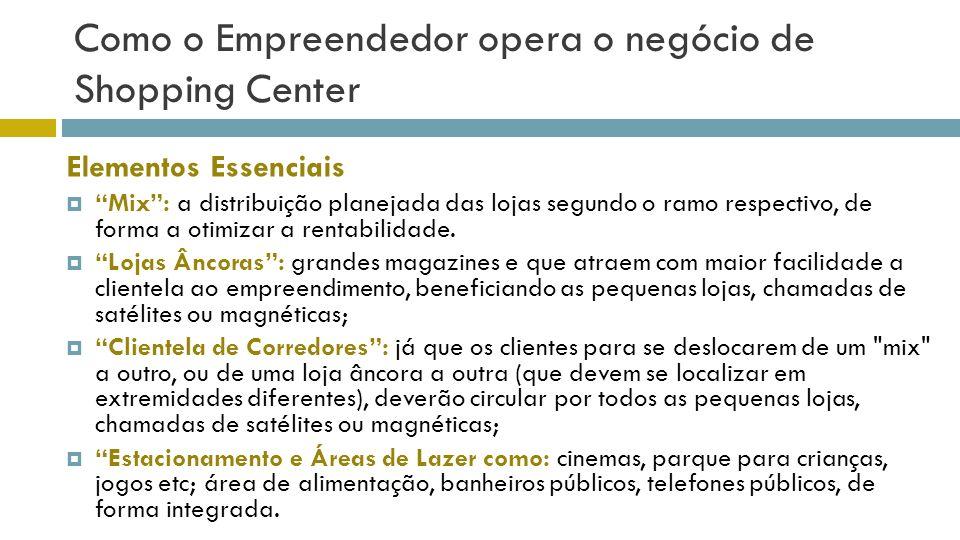 Como o Empreendedor opera o negócio de Shopping Center Mix: a distribuição planejada das lojas segundo o ramo respectivo, de forma a otimizar a rentab