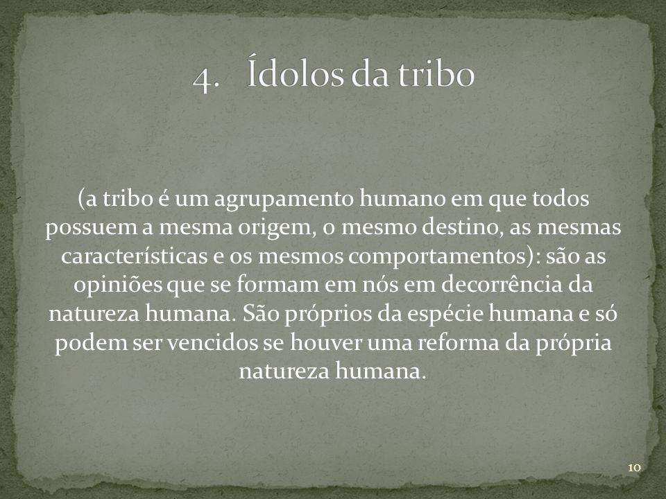(a tribo é um agrupamento humano em que todos possuem a mesma origem, o mesmo destino, as mesmas características e os mesmos comportamentos): são as o