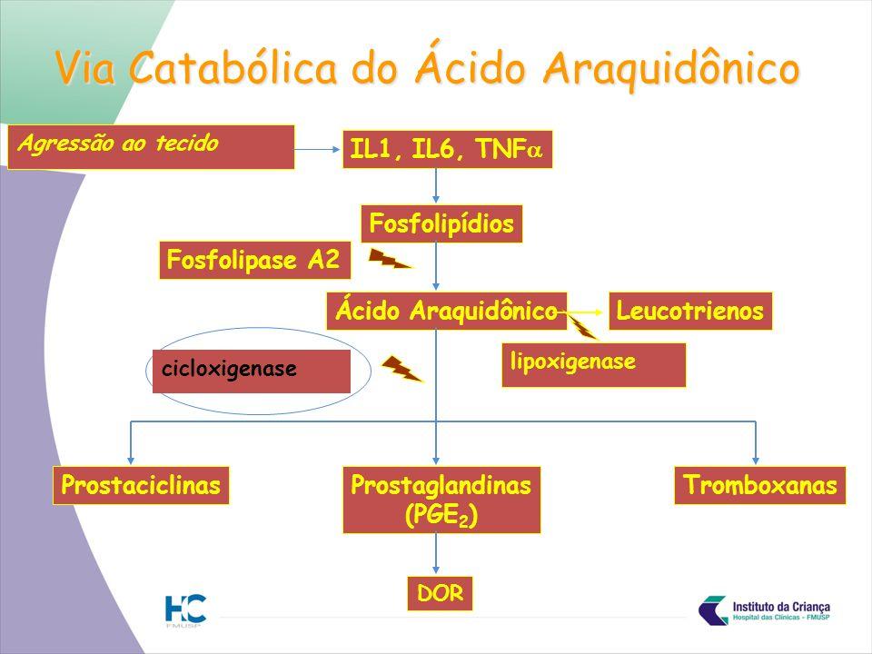 Via Catabólica do Ácido Araquidônico IL1, IL6, TNF Fosfolipídios Fosfolipase A2 Ácido Araquidônico ProstaciclinasProstaglandinas (PGE 2 ) Tromboxanas DOR Leucotrienos cicloxigenase lipoxigenase Agressão ao tecido