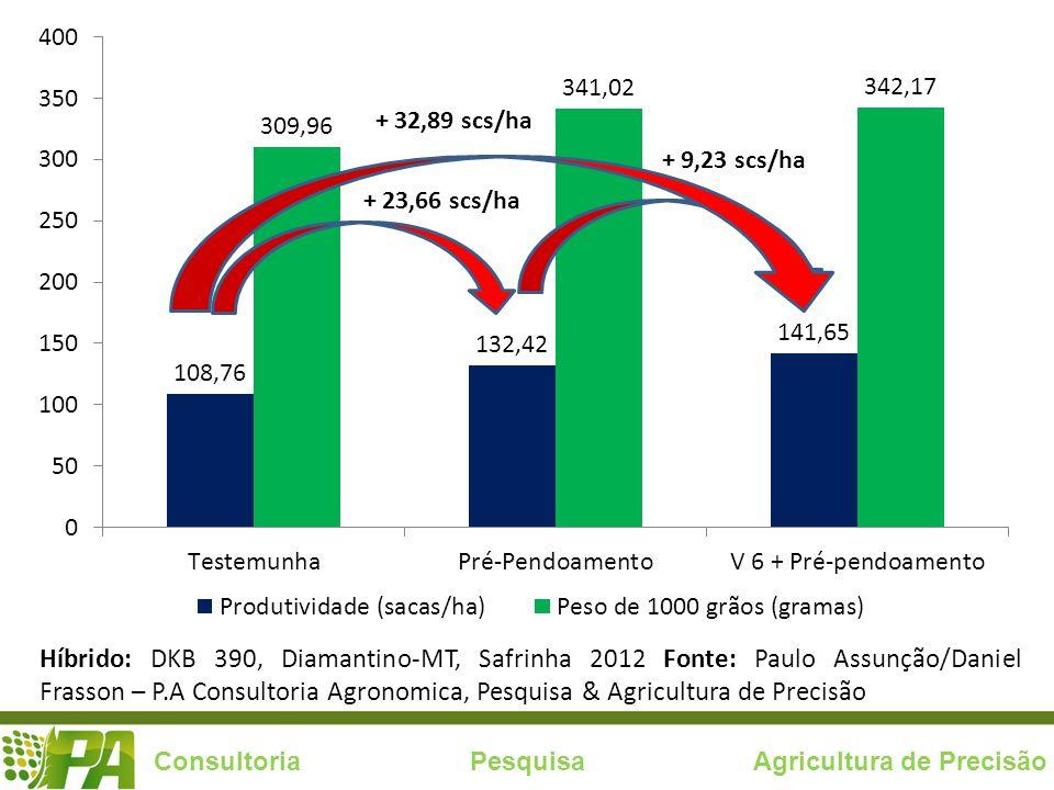 Consultoria Pesquisa Agricultura de Precisão + 23,66 scs/ha + 9,23 scs/ha + 32,89 scs/ha Híbrido: DKB 390, Diamantino-MT, Safrinha 2012 Fonte: Paulo A