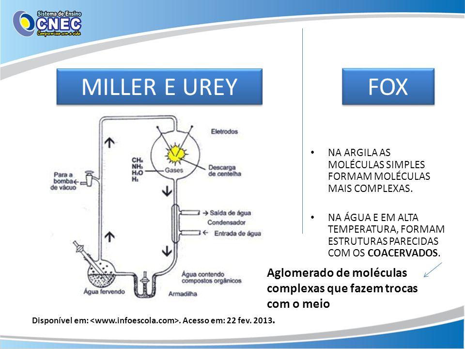 MILLER E UREY NA ARGILA AS MOLÉCULAS SIMPLES FORMAM MOLÉCULAS MAIS COMPLEXAS. NA ÁGUA E EM ALTA TEMPERATURA, FORMAM ESTRUTURAS PARECIDAS COM OS COACER