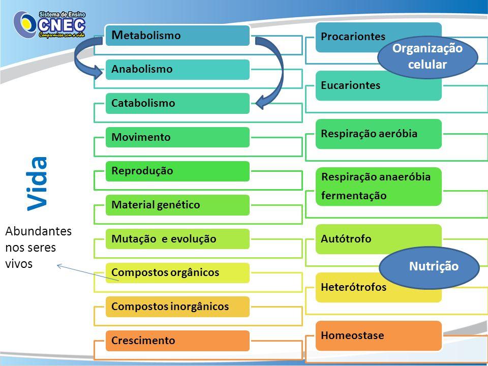 M etabolismo AnabolismoCatabolismoMovimentoReproduçãoMaterial genéticoMutação e evoluçãoCompostos orgânicosCompostos inorgânicosCrescimento Procariont