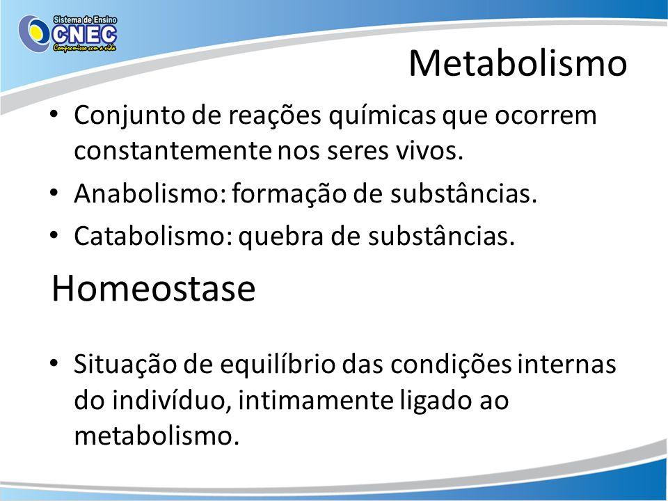 Metabolismo Conjunto de reações químicas que ocorrem constantemente nos seres vivos. Anabolismo: formação de substâncias. Catabolismo: quebra de subst
