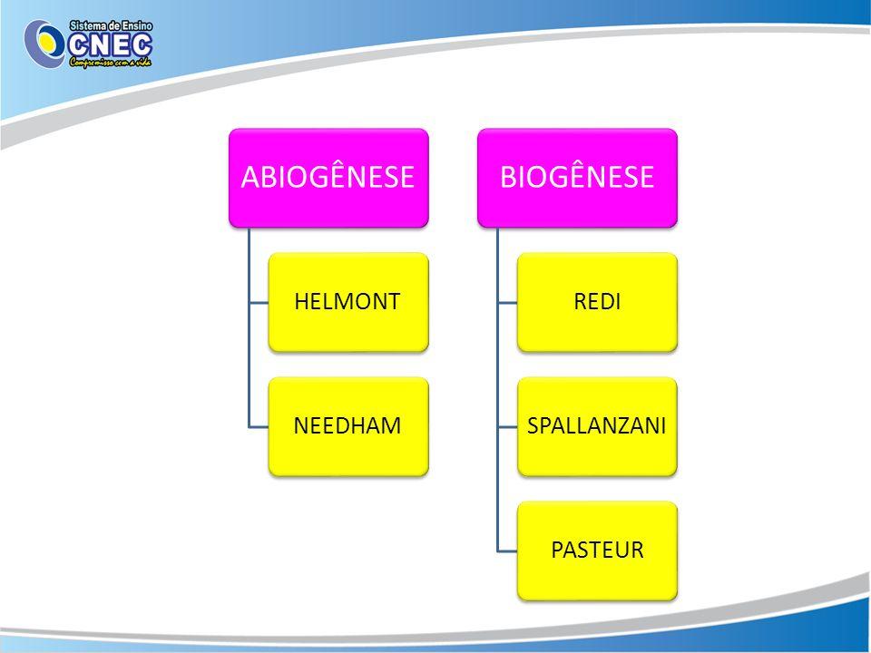 ABIOGÊNESE HELMONTNEEDHAM BIOGÊNESE REDISPALLANZANIPASTEUR