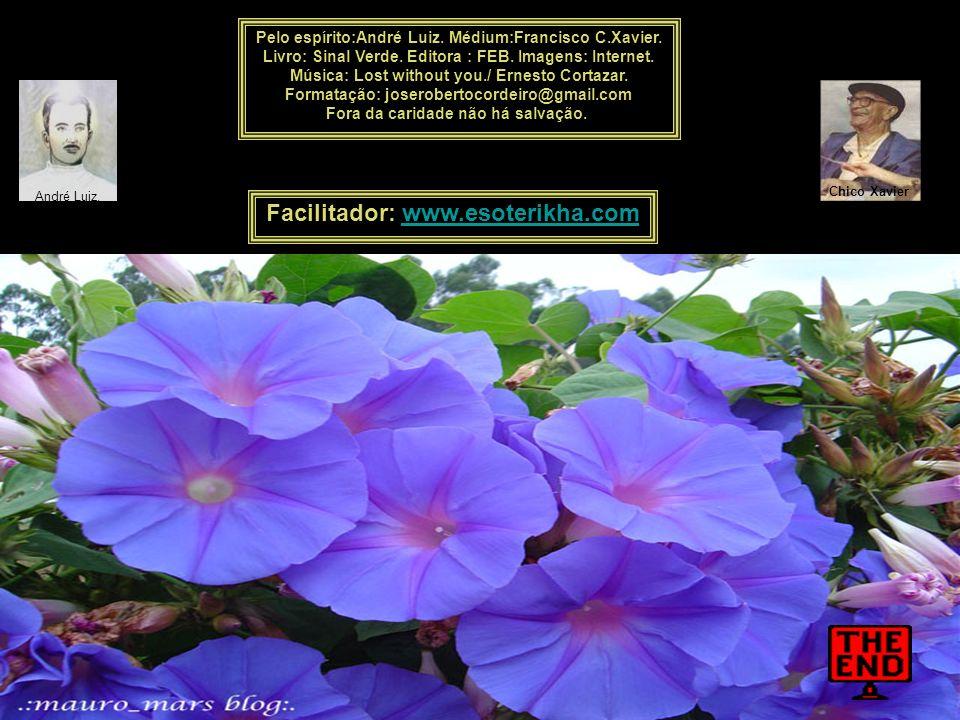 Quando o céu estiver em cinza, a derramar-se em chuva, medite na colheita farta que chegará do campo e na beleza das flores que surgirão no jardim.