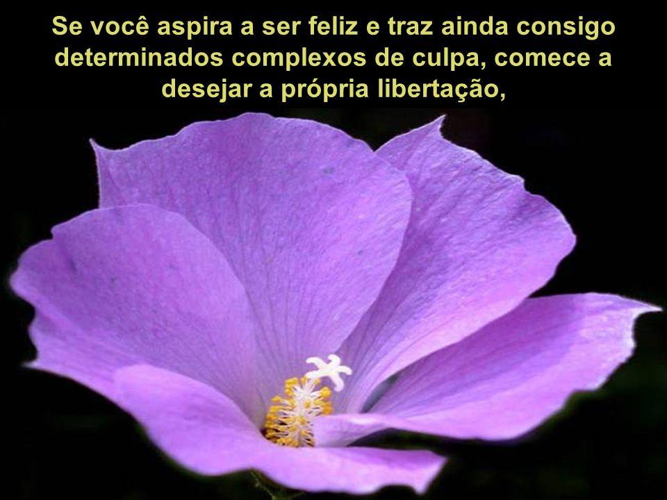 A felicidade pode exibir-se, passear, falar e comunicar-se na vida externa, mas reside com endereço exato na consciência tranqüila.