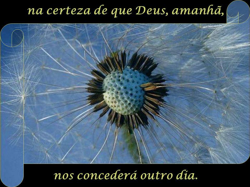 com tanta força que não consigas evitar as próprias lágrimas, mesmo chorando, confia em Deus,