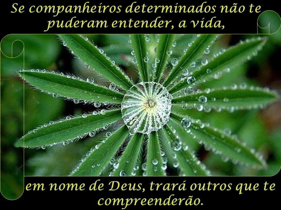 Se companheiros determinados não te puderam entender, a vida, em nome de Deus, trará outros que te compreenderão.