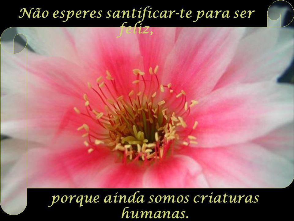 Não esperes santificar-te para ser feliz, porque ainda somos criaturas humanas.