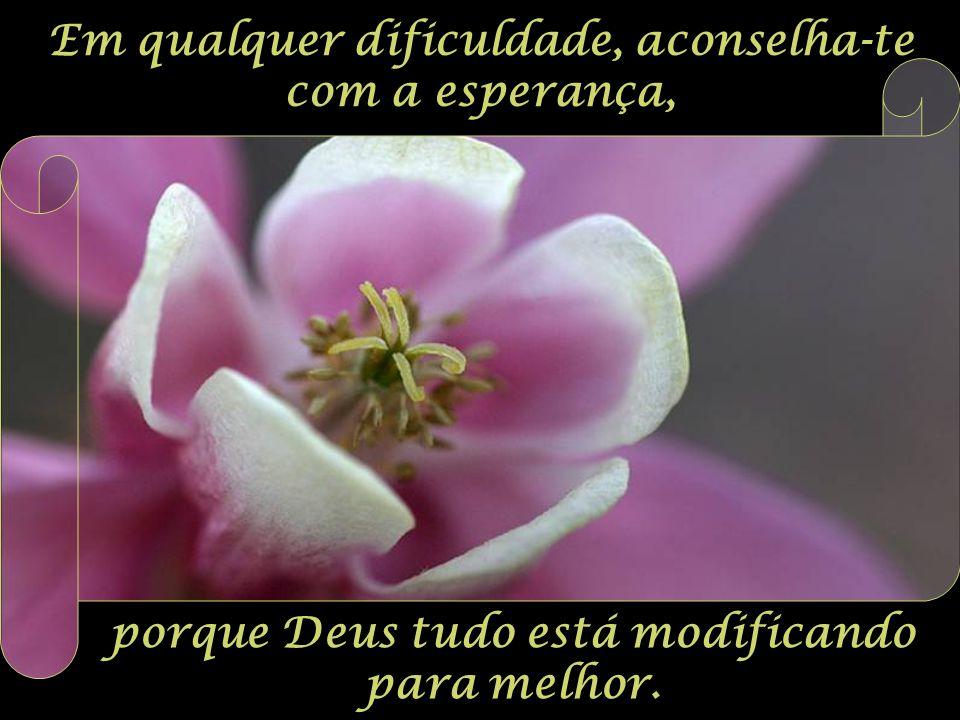 Em qualquer dificuldade, aconselha-te com a esperança, porque Deus tudo está modificando para melhor.