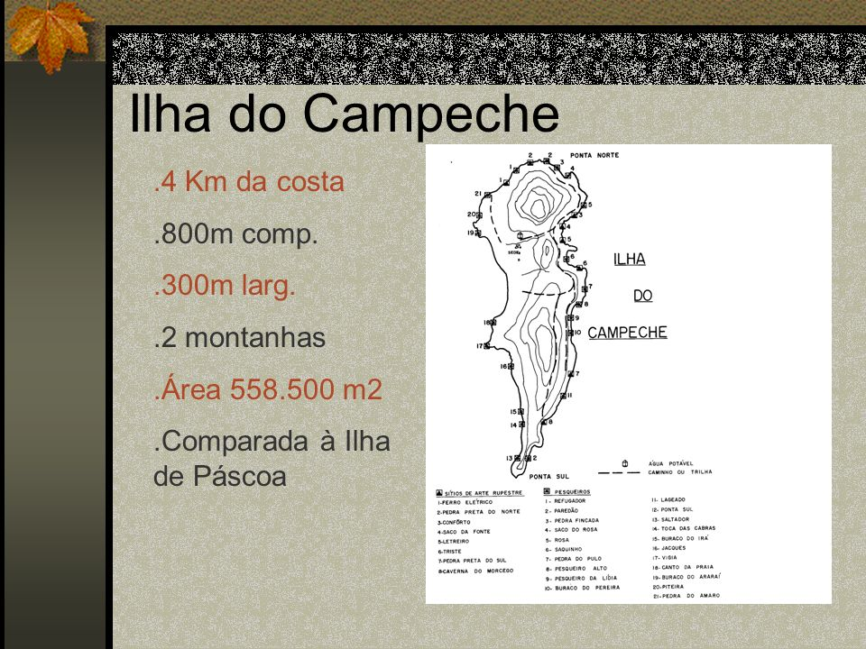 Ilha do Campeche.4 Km da costa.800m comp..300m larg..2 montanhas.Área 558.500 m2.Comparada à Ilha de Páscoa